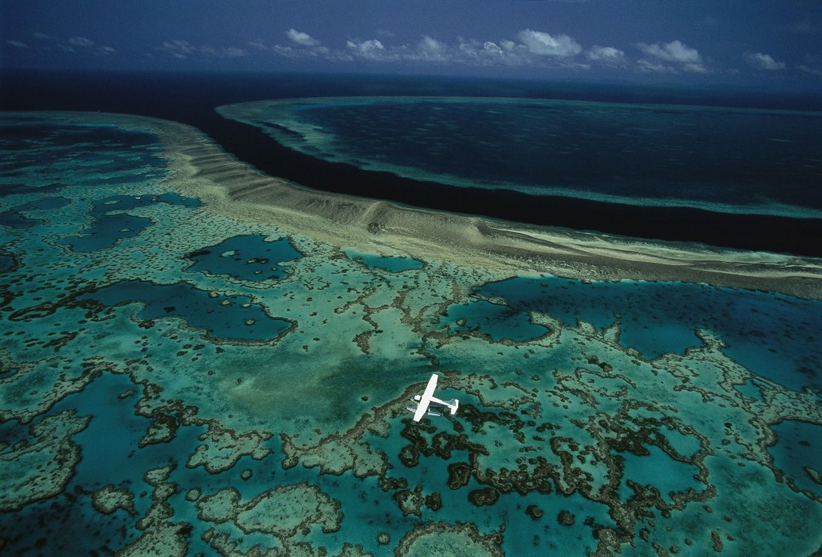 The Great Barrier Reef is among the most diverse marine environments in the world, hosting 5,000 ...
