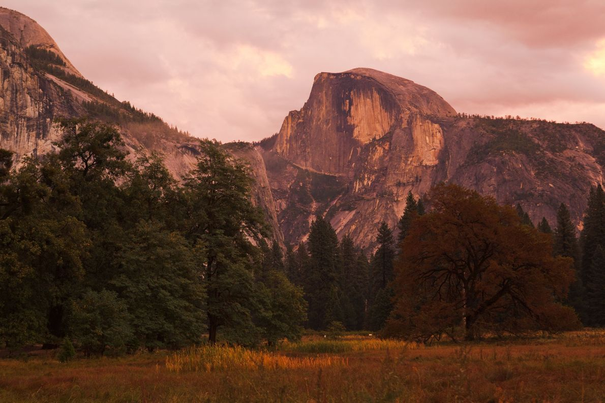 The climber first to climb Half Dome without a rope is taking the rockfalls in stride. ...