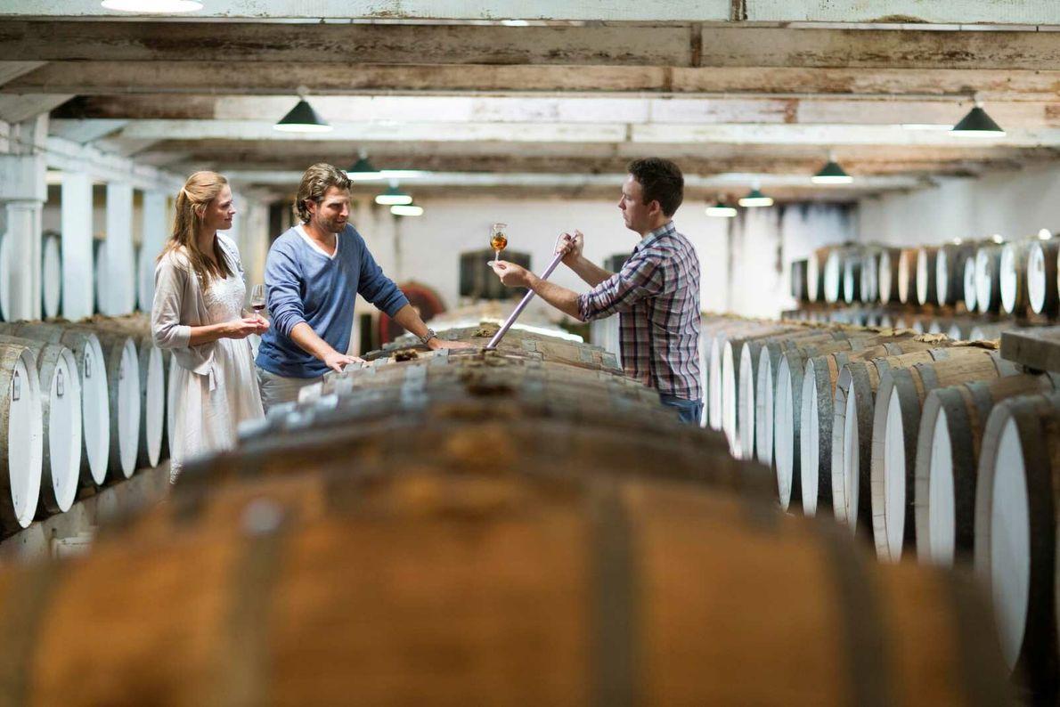 tasting wine from a barrel
