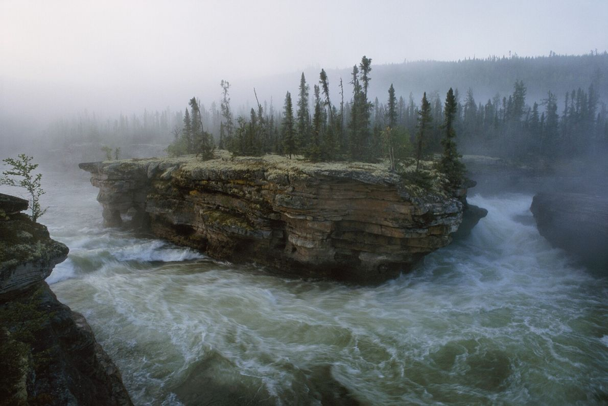 Picture of river falls flowing around a small island full of pine trees in Canada