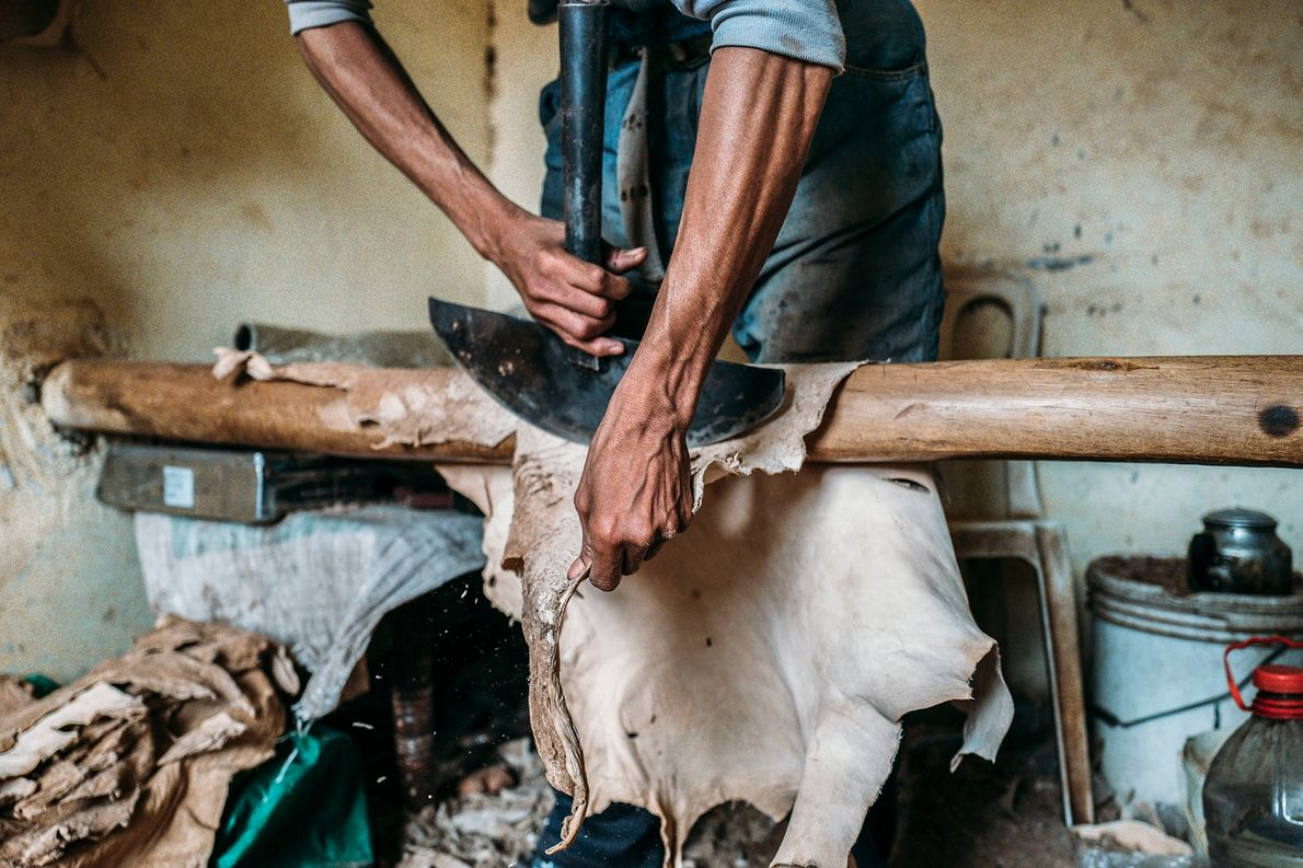 A worker scrapes off a tanned hide (the final stage of the process) with a traditional ...