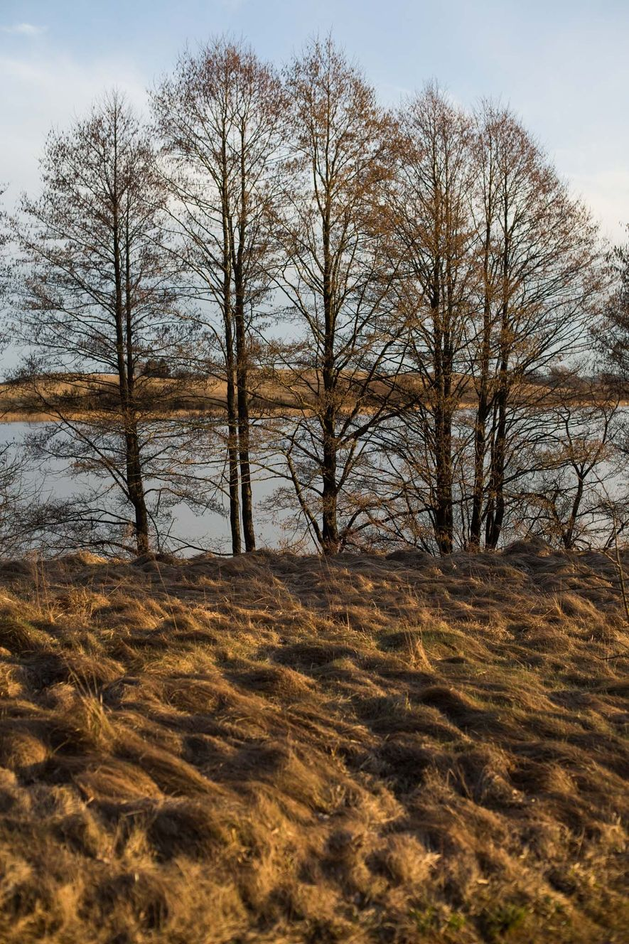 Erna Schneider's home in Lithuania is located near Lake Orija, seen here in the early evening ...