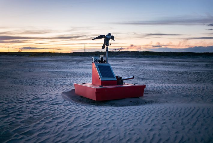 A robotic bird of prey sits on a floating platform equipped with a strobe light, loudspeaker, ...