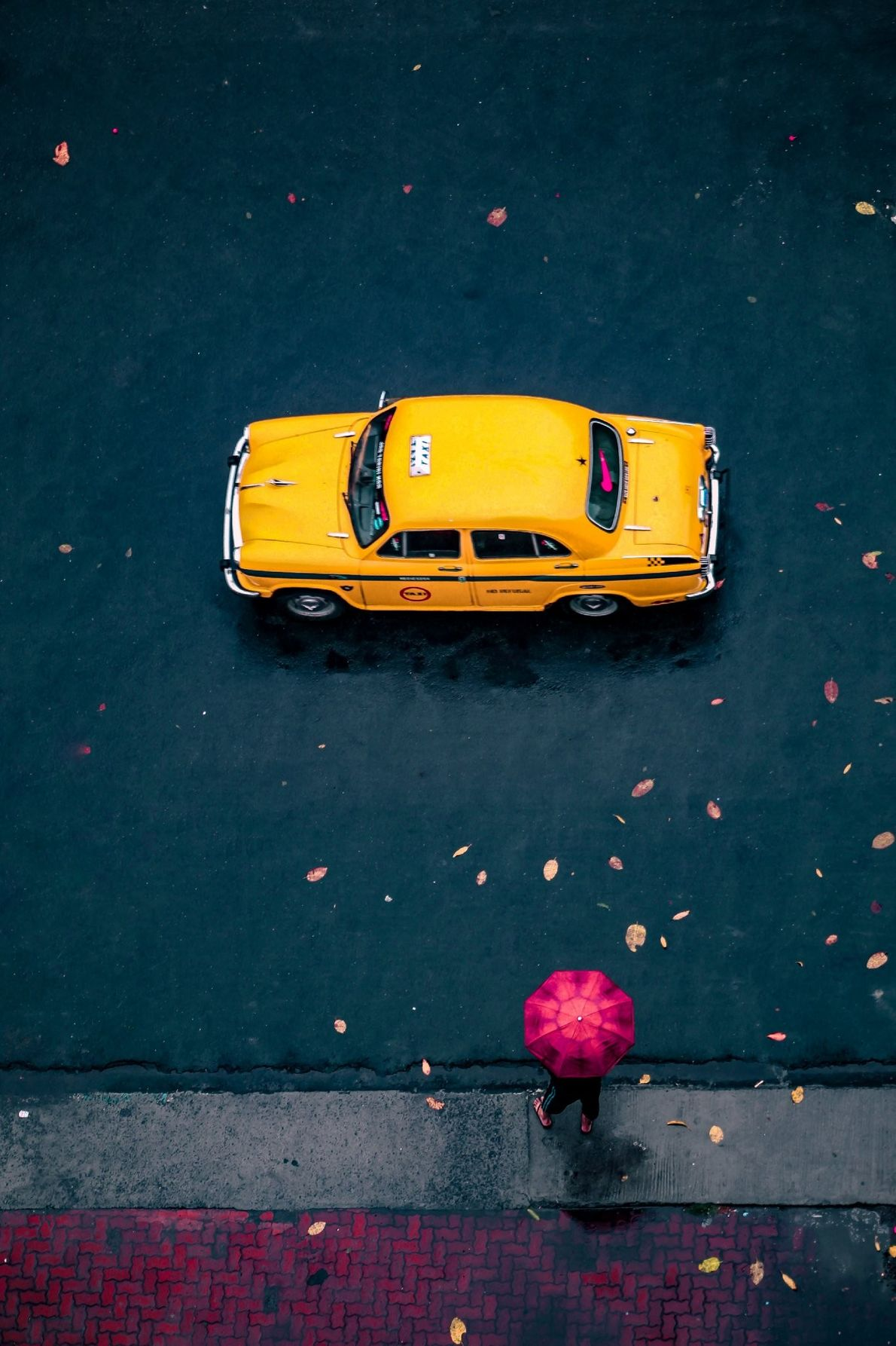 """""""Post rain scenes in the City of Joy while a Kolkata taxi and a lady with ..."""