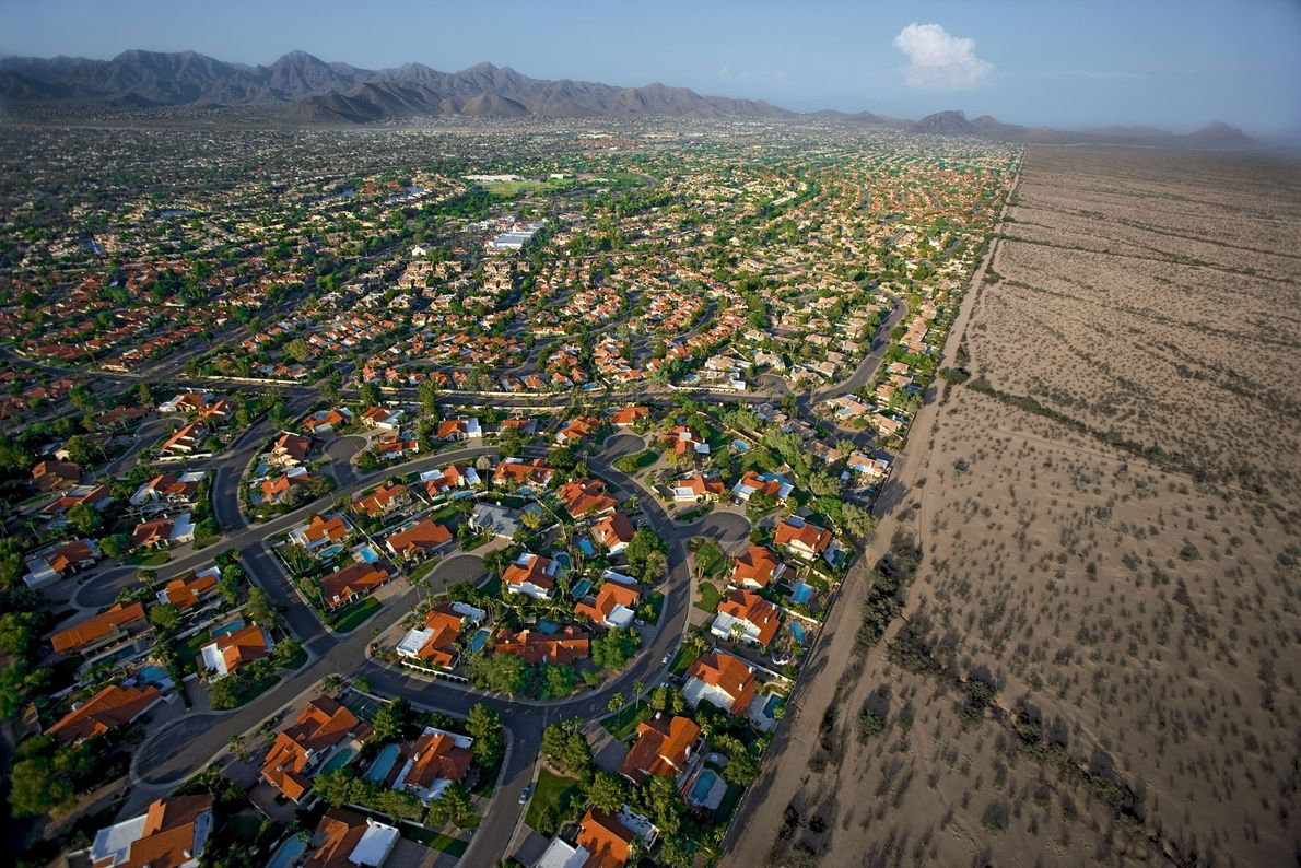 Phoenix, Arizona, built in the middle of a desert, requires vast amounts of water to keep ...