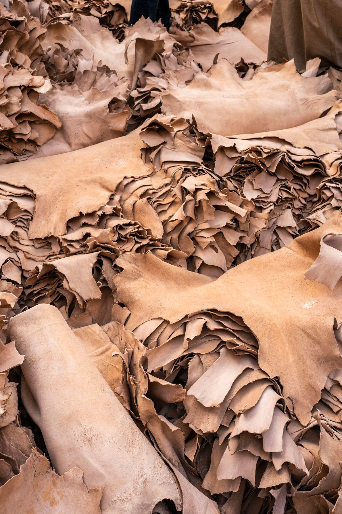 Tanned hides ready to be sold to local dyers and artisans. Negotiations take place in the ...