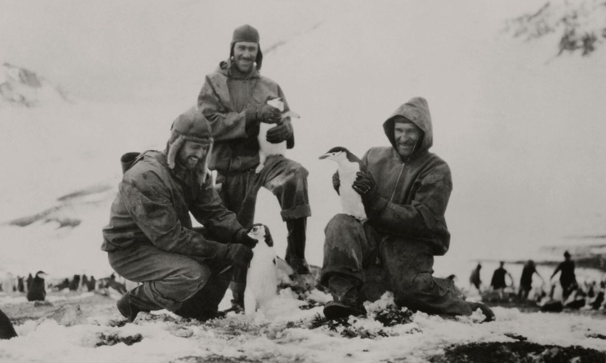 Lietenant Carl Eielson (right) and other members of the Wilkins-Hearst South Polar Expedition in 1929 held ...