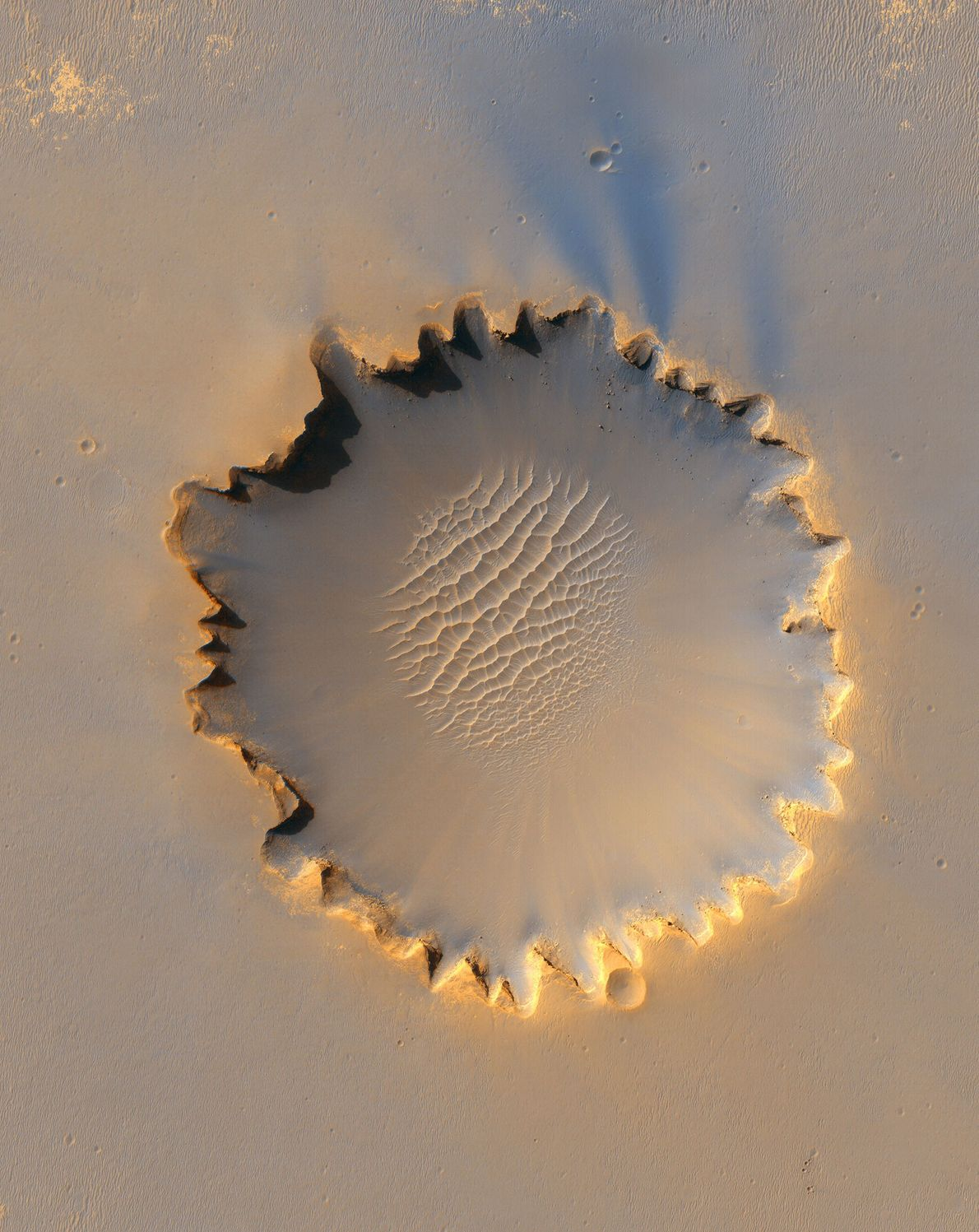 Victoria Crater has a distinctive 'scalloped' shape to its rim, caused by erosion and downhill movement ...