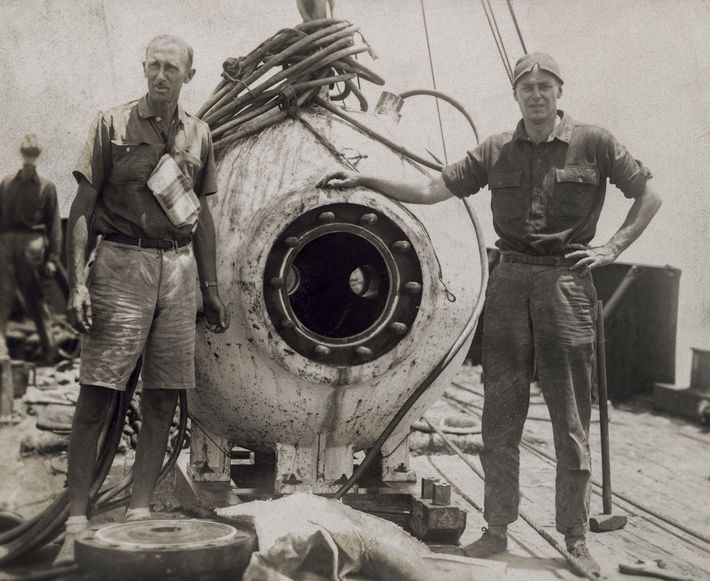 'After a dive of a quarter-mile beneath the ocean, we had looked upon a world wholly ...