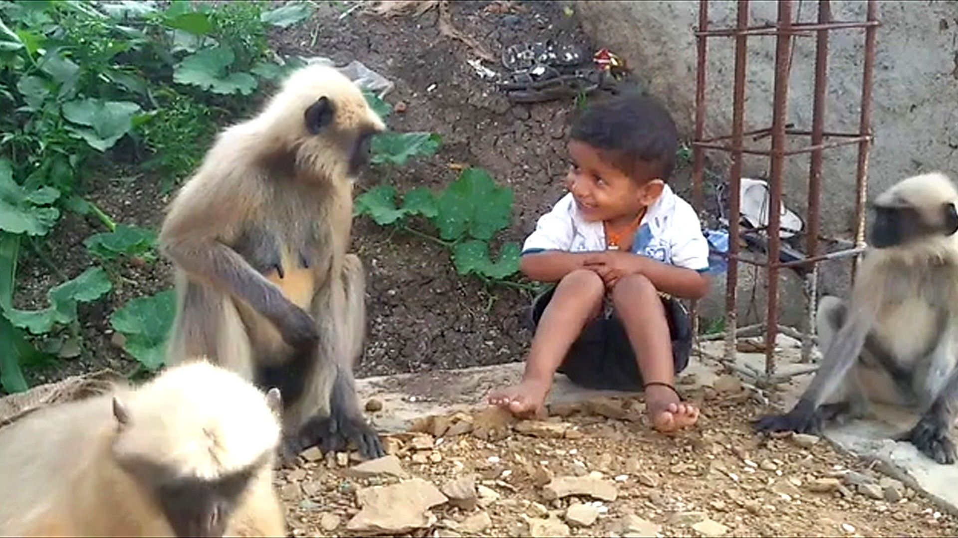 The One Hundredth Monkey Page 31