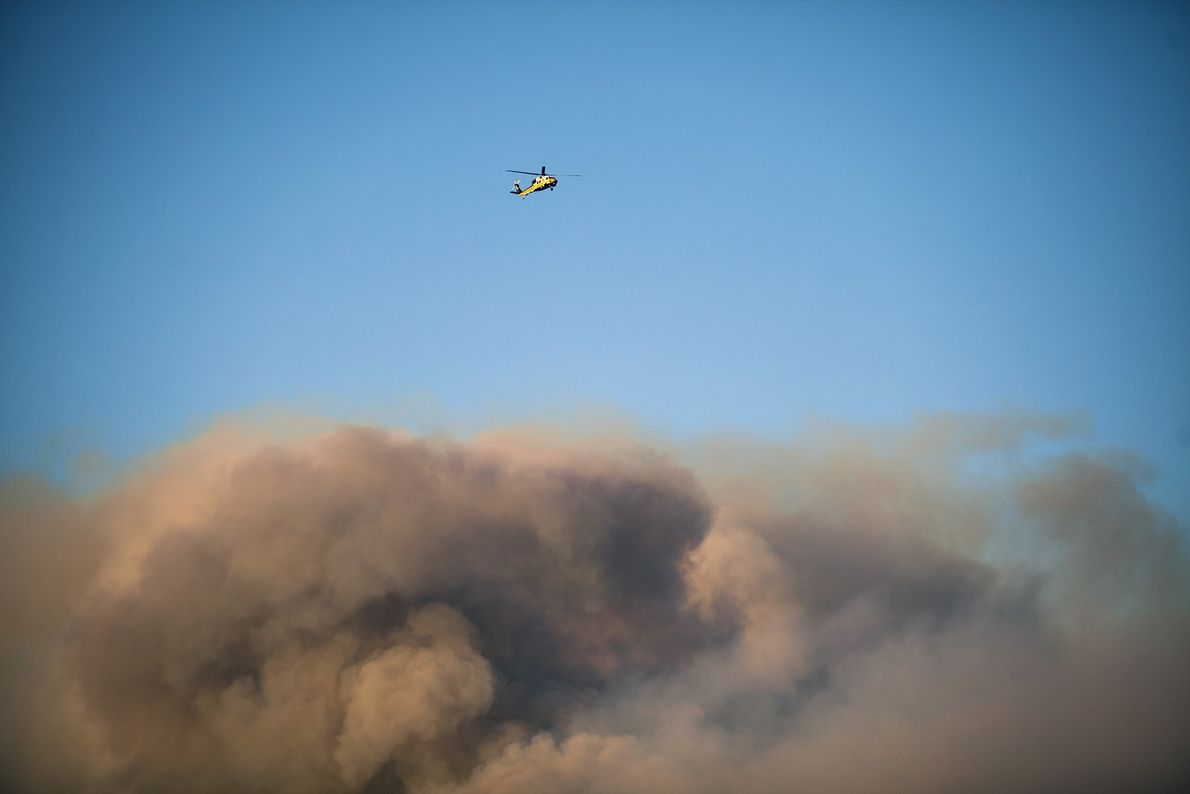 A helicopter flies above the roiling smoke from the Woolsey Fire near Thousand Oaks, California. Firefighters ...