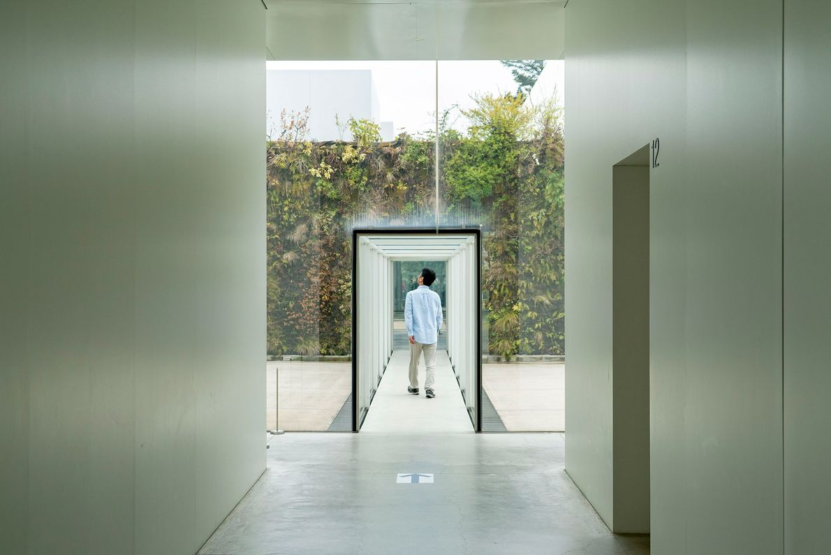 A visitor explores the bright passages of Japan's 21st Century Museum of Contemporary Art. The circular ...