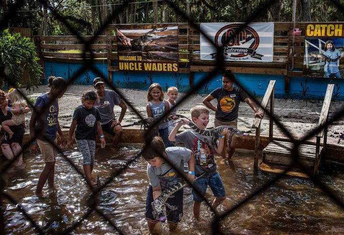 There are a number of ways that kids and families visting Gatorama can have hands-on experiences ...