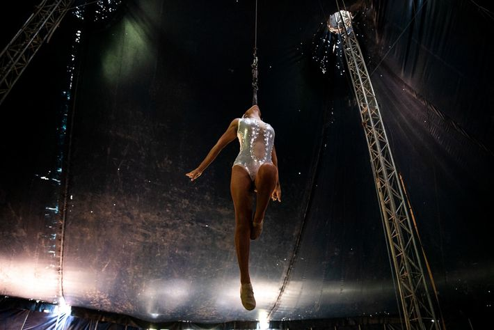 Leticia Nájera hovers above the stage, suspended only by her teeth. Few modern circus performers still ...