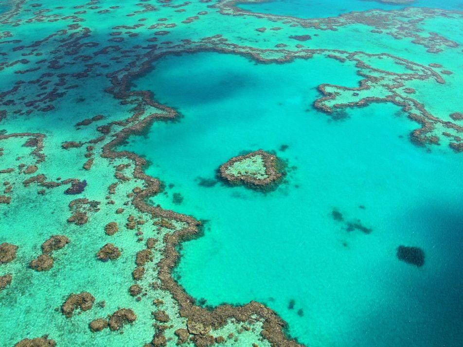 Experience the Splendour of Australia's Great Barrier Reef