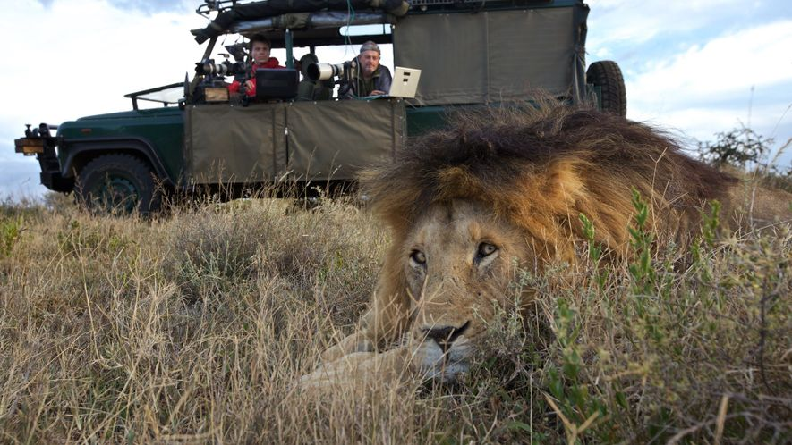 How Engineers Hack Cameras to Photograph and Study Sharks and Lions