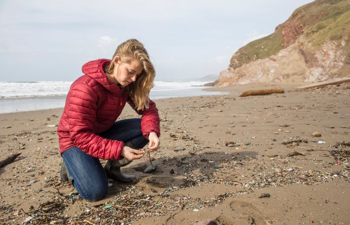 Imogen Napper examining beach debris. Her research focusses on the pathways plastics take to reach our ...