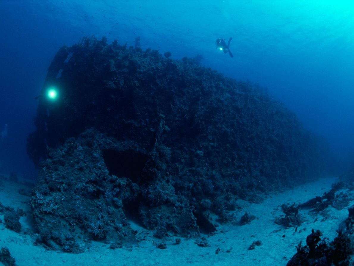 The reefs of the Red Sea are as deadly as they are rich. Here, divers explore ...