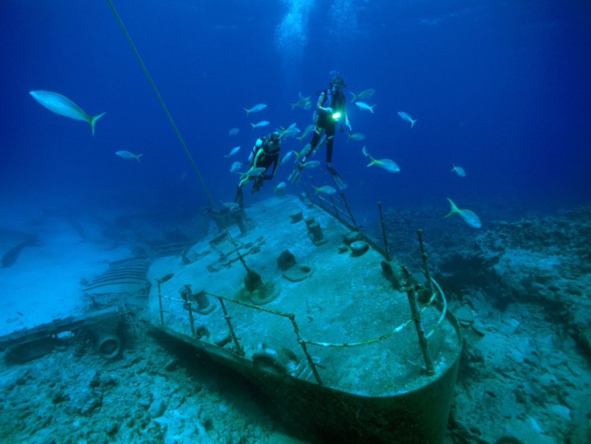 Divers and fish hover over the remains of a ship that broke up on one of ...