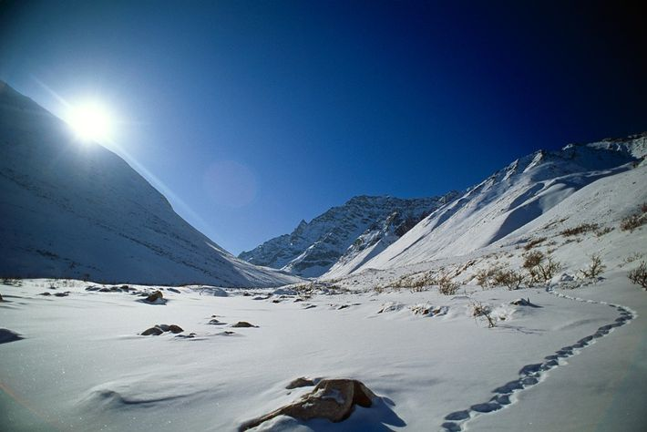 Gates of the Arctic is one of several national parks in remote, roadless areas of Alaska. ...