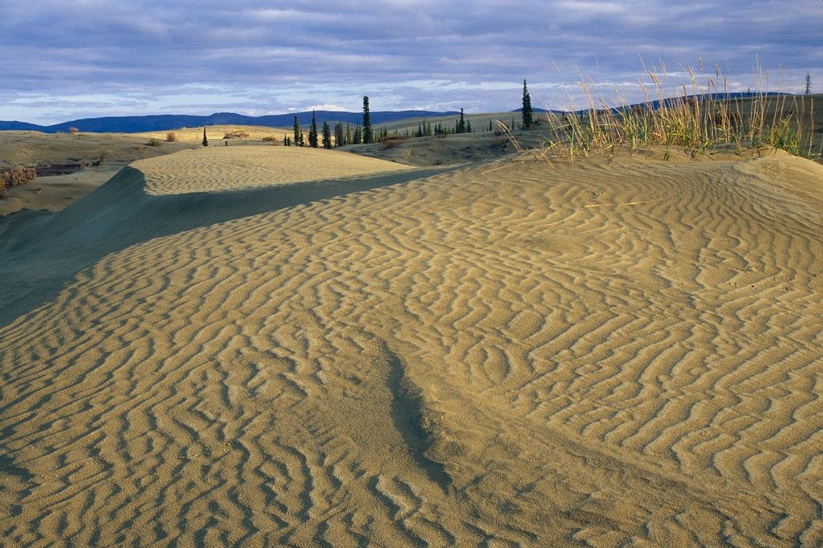 Kobuk Valley's ethereal sand dunes lie about 40 miles (64 kilometres) north of the Arctic Circle. ...