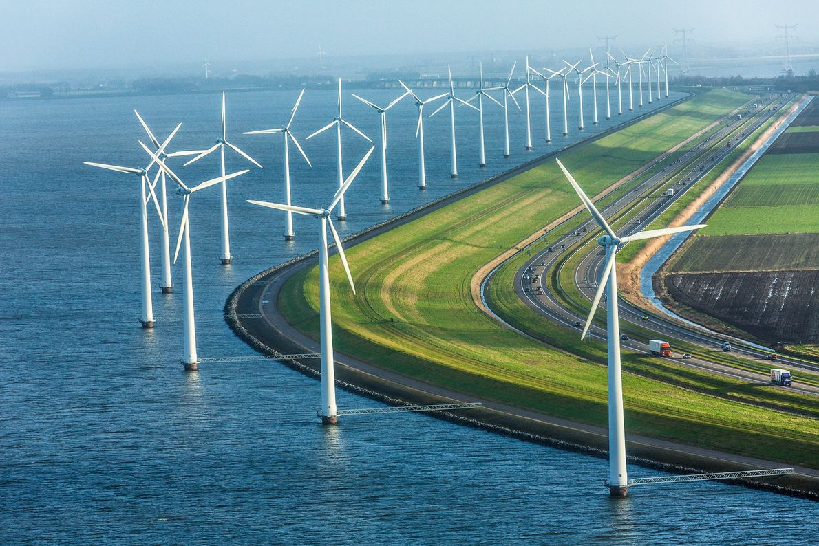 Dozens of wind turbines sprout along a dike that long ago turned a five-hundred-square-mile stretch of ...