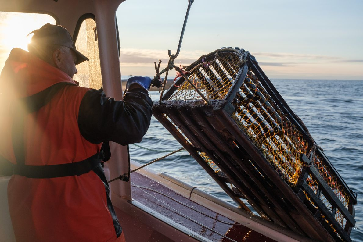 Since summer is the offseason for the island's commercial fishing industry, North Rustico-area fishermen use their ...