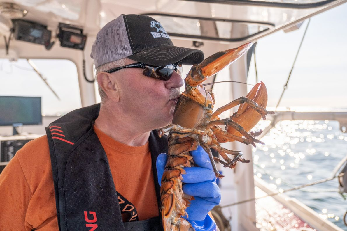 Captain Joey Gauthier expresses his gratitude for the lobsters that have provided his livelihood since he ...