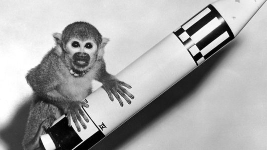 Photos show historic moments of animals and humans flying to space