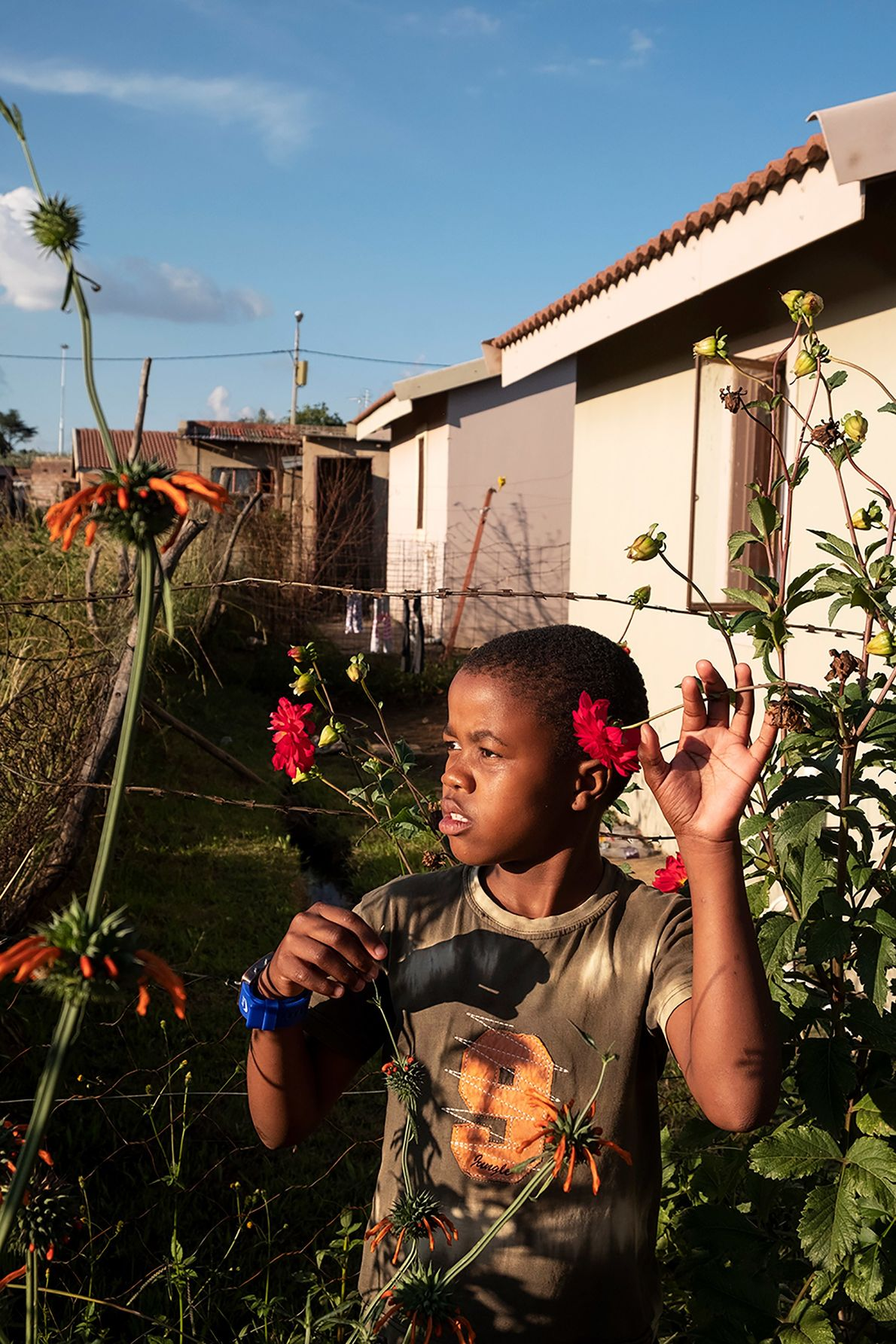A young boy in a Johannesburg, South Africa, township finds beauty in the wildflowers along a ...