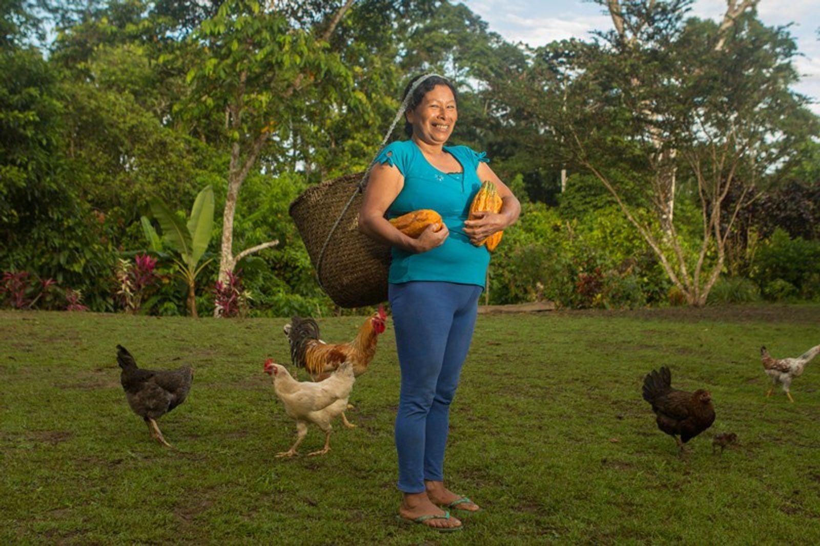 In Pictures: Cacao harvesting in Ecuador