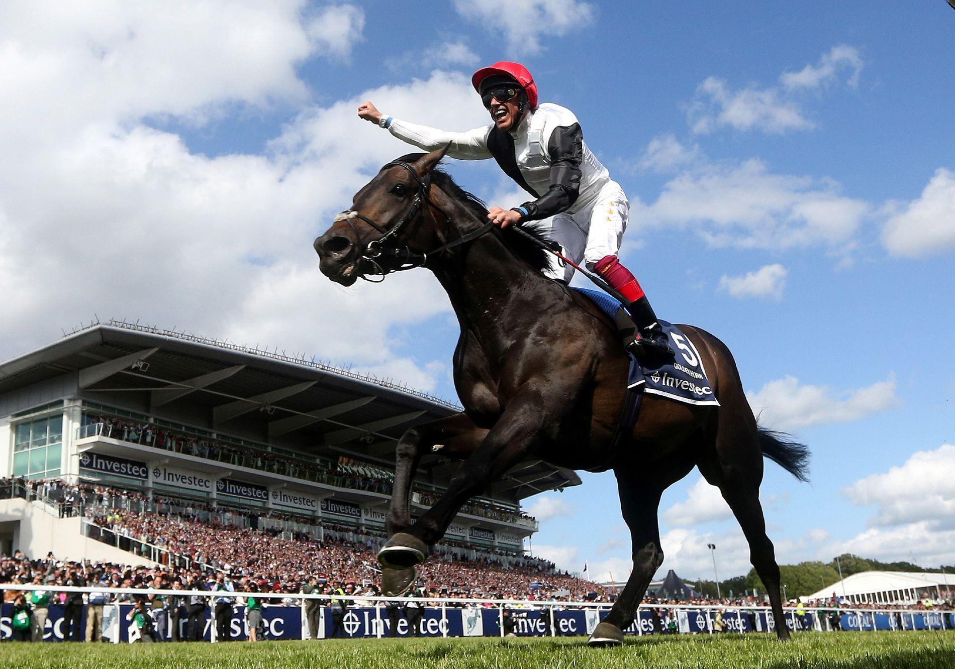1_racehorses