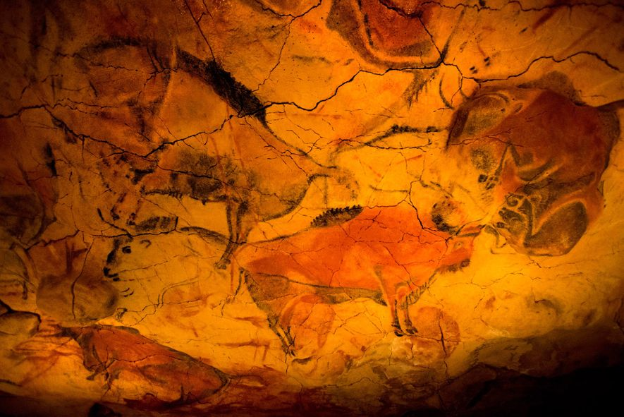 Bison paintings cover the walls of the Altamira caves.