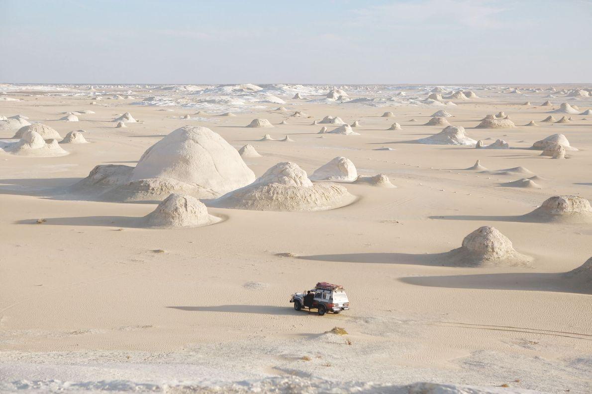 Bahariya Oasis, Egypt