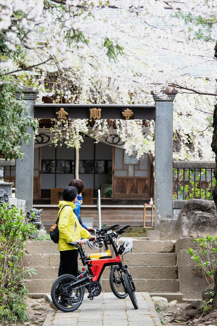 One of the best ways to explore the southern base is by e-bike, pausing at temples ...