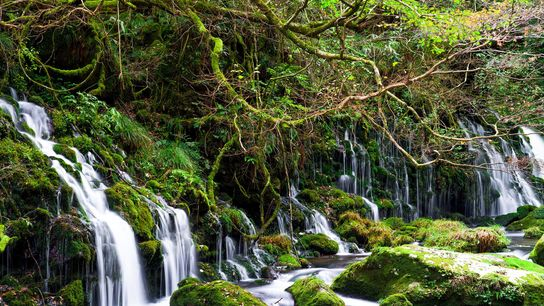 The magical Mototaki Falls are hidden deep in a woodland of beech and maple, on the ...
