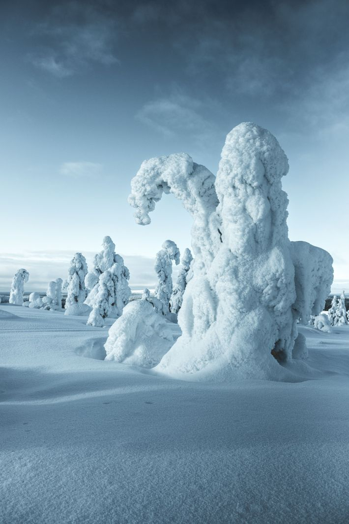 """""""The most beautiful days in Lapland, Finland are those when you can't feel your fingers!"""" writes ..."""