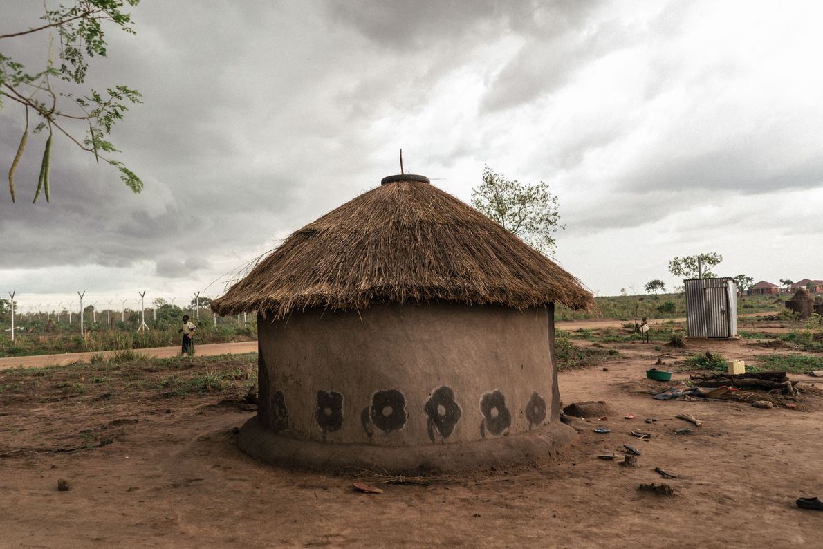 Flowers brighten the outer walls of a home in Northern Uganda.