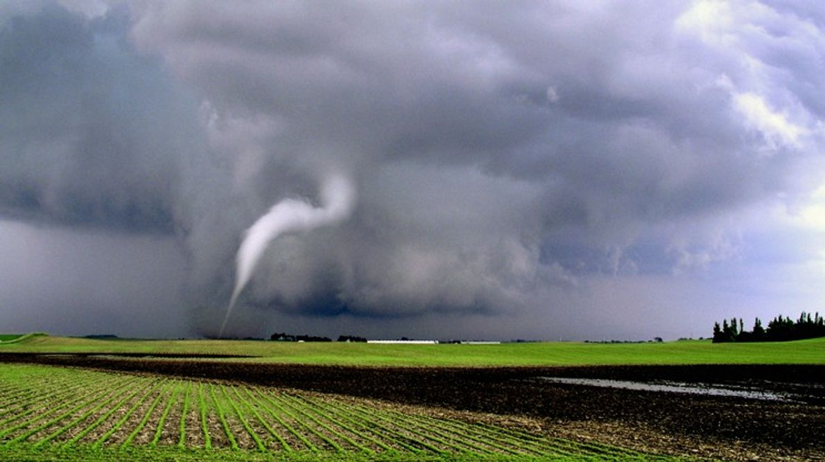 A thin funnel cloud touches down in a field in northwest Iowa. Funnel clouds become tornadoes ...