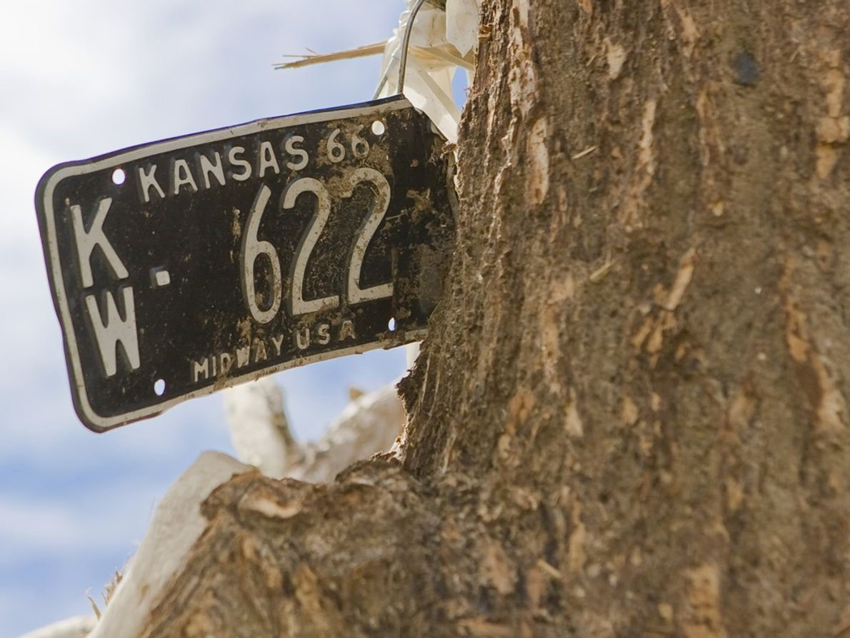A Kansas vehicle license plate impaled on a tree after an EF5 tornado struck Greensburg, Kansas. ...