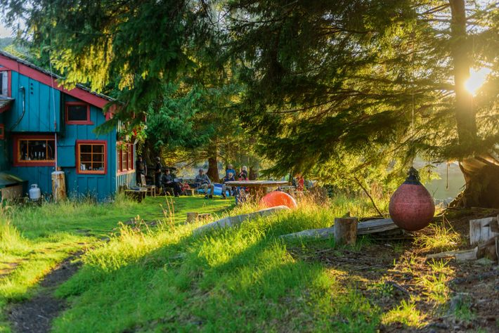 Susan's Kitchen in Rose Harbour, Haida Gwaii, a wildlife-rich archipelago off the west coast of Canada.