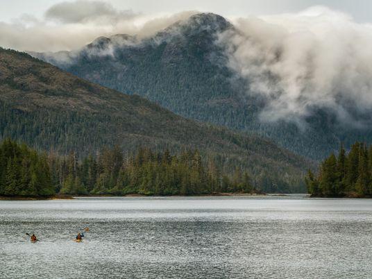 Into the wild in Haida Gwaii, Canada's 'Galápagos of the North'