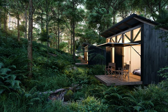 Spicers' Eco Cabins, set on the edge of the rainforest in Main Range National Park is ...