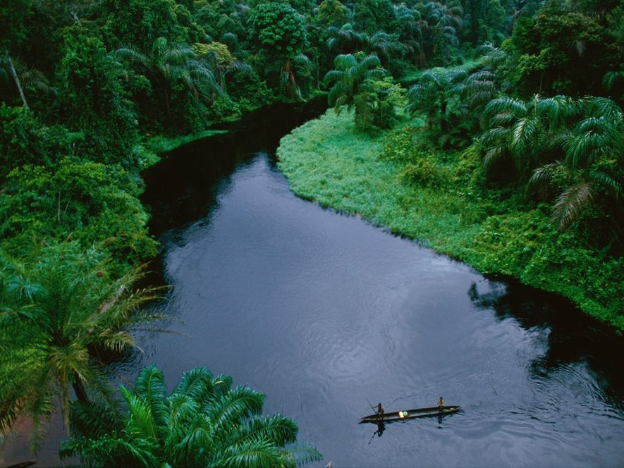 Canoes are vital for transportation on the rain forest rivers of theRepublic of the Congo. The …