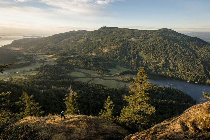 Salt Spring Island is renowned for its community farms and markets selling locally produced cheeses and ...