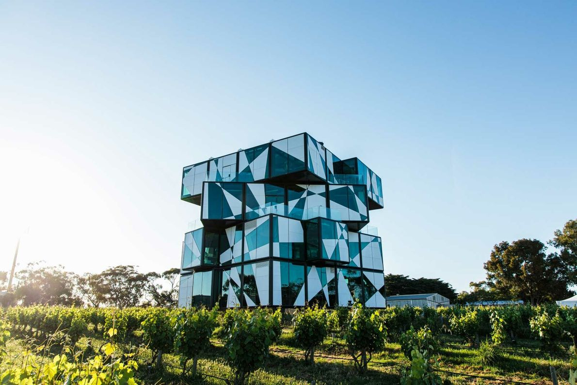 glass cube-shaped building at d'Arenberg winery