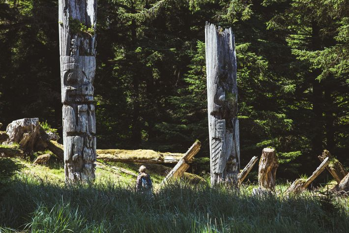 Many of Haida Gwaii's totem poles are thousands of years old, traditionally used by the Haida people ...