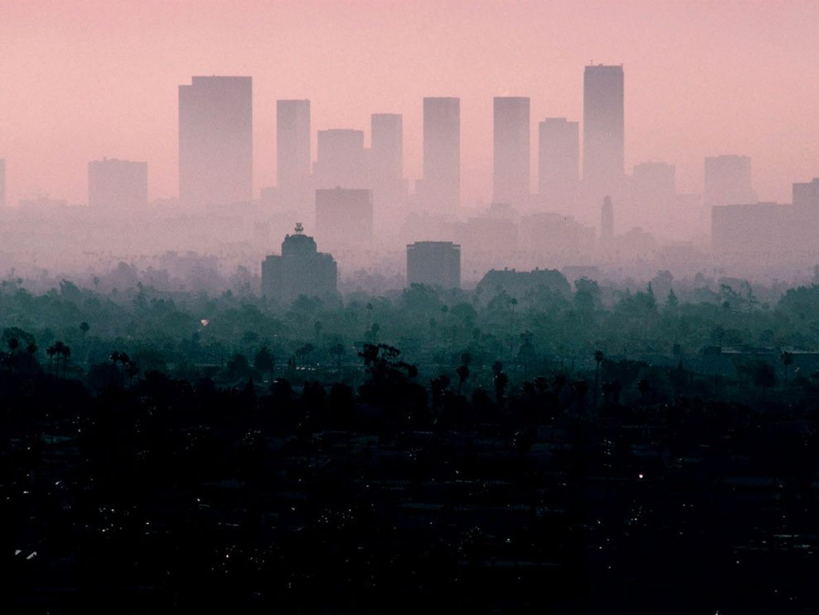 Hazy golden light illuminates the Los Angeles skyline, which appears to float on a bed of ...