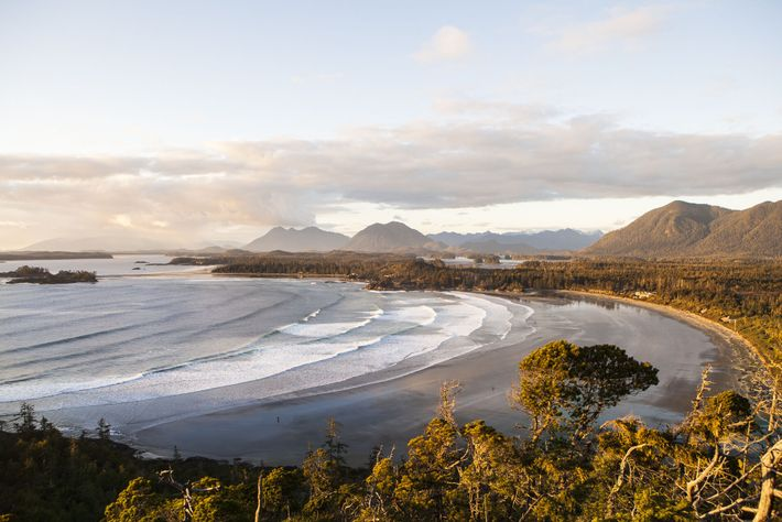 Surrounded by the Pacific on all sides, Vancouver Island is renowned for its wild, untamed beaches ...