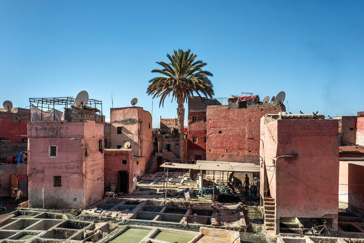 An open-air tannery in the Bab Debbagh quarter, on the northern edge of the medina. The ...